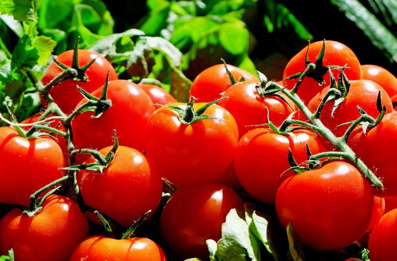 Dieta hipocalórica para adelgazar
