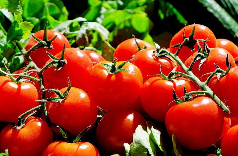 menú para la dieta proteica